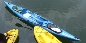 Harmony Adventure TAP kayak paddle review