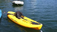 Here are a variety of simple kayak modifications that I have done, or seen done, that can improve the utility and safety of most kayaks.
