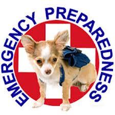 Pet emergency plan for natural disaster