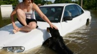 If you live with furry friends it's important to plan for their well being and safety in an emergency. No one can forget the images of pets struggling for survival in the aftermath of Hurricane Katrina.
