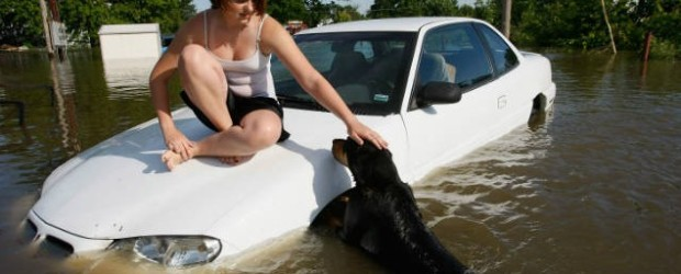 If you live with furry friends it's important to plan for their well being and safety in an emergency. No one can forget the images of pets struggling for survival in the aftermath of Hurricane Katrina.  Take some time now to prepare for emergency scenarios that could arise in your region.