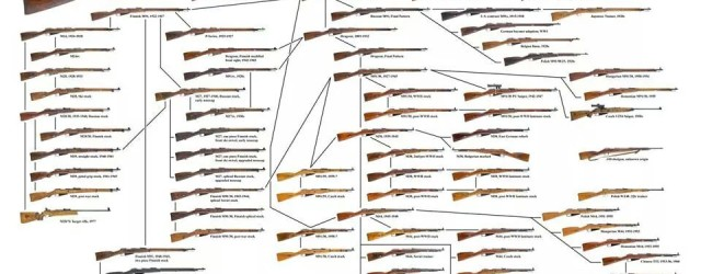 The many, many variants of the famous Mosin Nagant rifle.