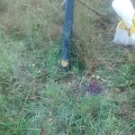 """DIY PVC deer feeder 4"""" sewer pipe - cap detail"""