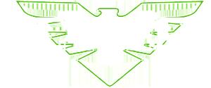 TNVC_logo