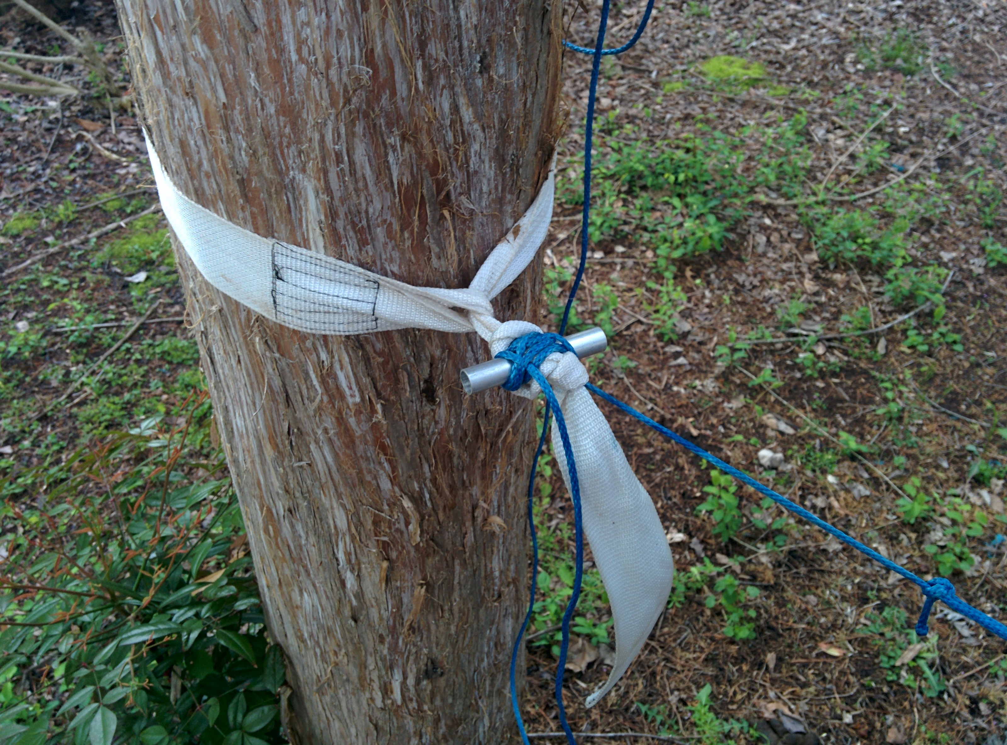 blue ridge camping hammock   tree strap lawson hammock blue ridge camping hammock long term review  rh   gear report