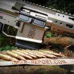 WMDguns Big Beast .308 AR10 stills side with amo row(58)