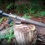 WMDguns Big Beast .308 AR10 stills side with amo row(59)