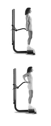 Soloflex_exercises_workouts_assembly (25)