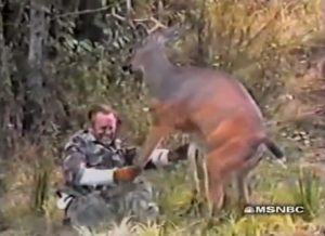 deer attacks hunter - why we hunt deer