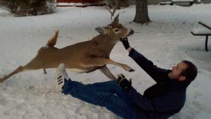 deer attacks man - why we hunt deer