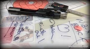 WMD Guns black NiB-X BCG review - first one
