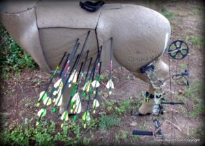 GlenDel Buck Full-Rut archery 3D target review - arrows in target