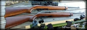 Ruger 10/22 Standard Carbine Rifle Review - 2 carbines