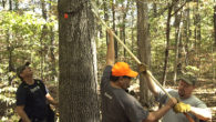 How To Properly Hang A Ladder Stand – Hunter Safety System Video This is important. Too many hunters are injured or die each year because of falls from deer stands that […]