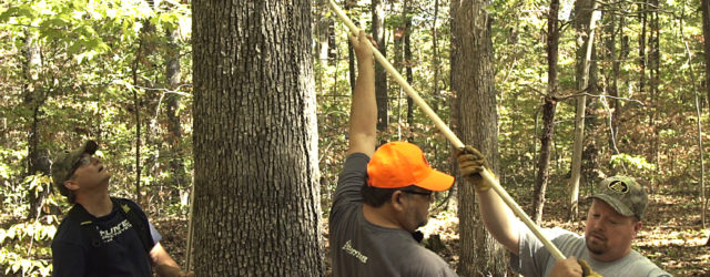 How To Properly Hang A Ladder Stand – Hunter Safety SystemVideo This is important. Too many hunters are injured or die each year because of falls from deer stands that […]